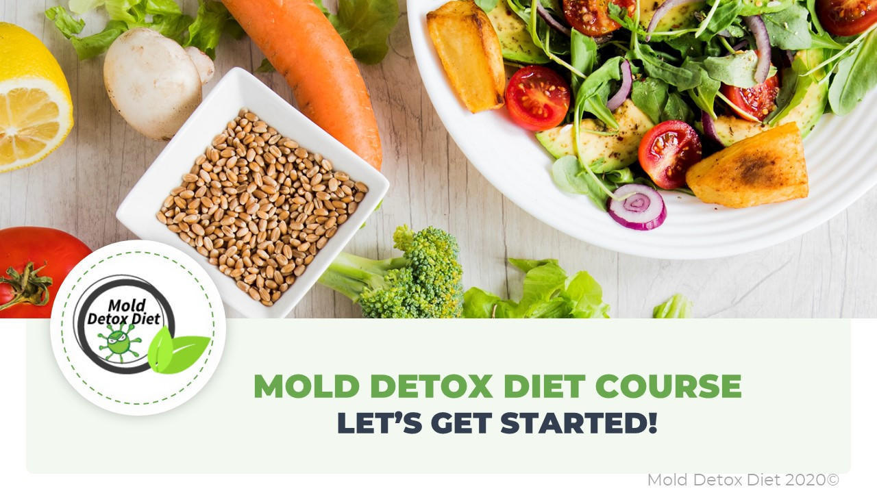 The Mold Detox Diet Course